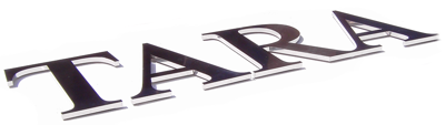 dimensional-stainless-steel-sign-letters